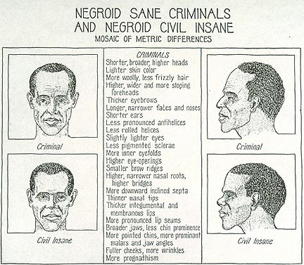 American eugenics movement archives eugenics negroid thumb 432x377 23970