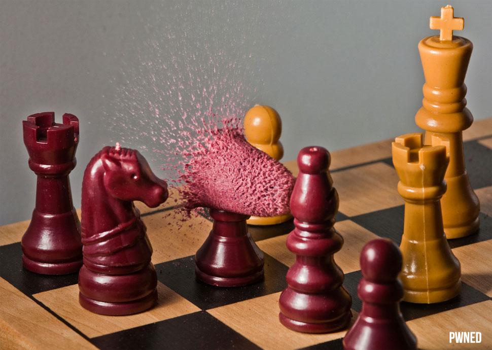 Картинки шахмат прикольные, тополь
