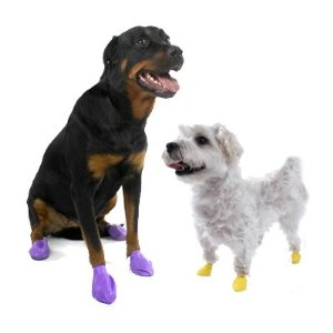 PAWZ Disposable Reusable Boots - 12 Pack XX Small in Yellow.jpeg