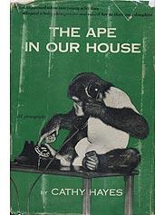 Viki-book-cover.jpg