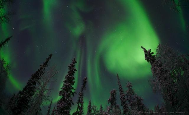 auroramax_wallpaper.jpg