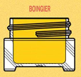 Boingier-Carmex