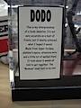 dodo-bird2.jpg