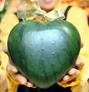 Heartmelon