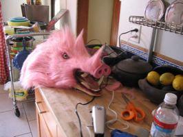 http://www.boingboing.net/images/_albums_v130_kukiloca_piggy2.jpg