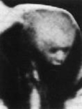 Blog Files 2010 01 Hauntedscrotum