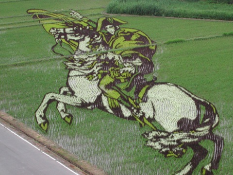 Images Rice Art 2009 4