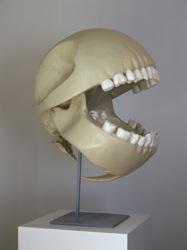 PacMan Skull!!!!!!!!!!!!!