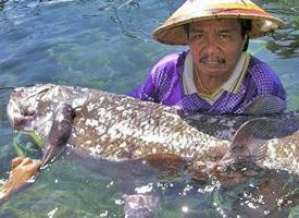News 2007 05 Images 070522-Coelacanth Big