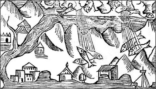 Wikipedia Commons A Ae Gravure De Pluie De Poissons