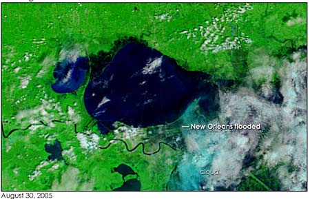 We've put our Landsat 7 pics on our image gallery (Link).