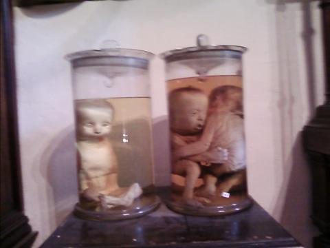 Pair Of Pickled Foetuses