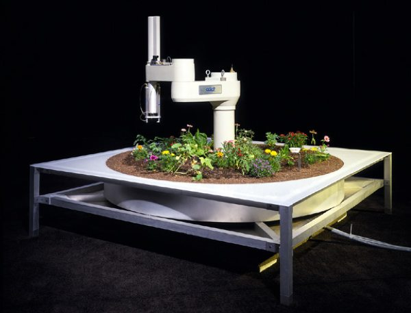 ~Goldberg Garden Telegarden-8X6-72Dpi-1