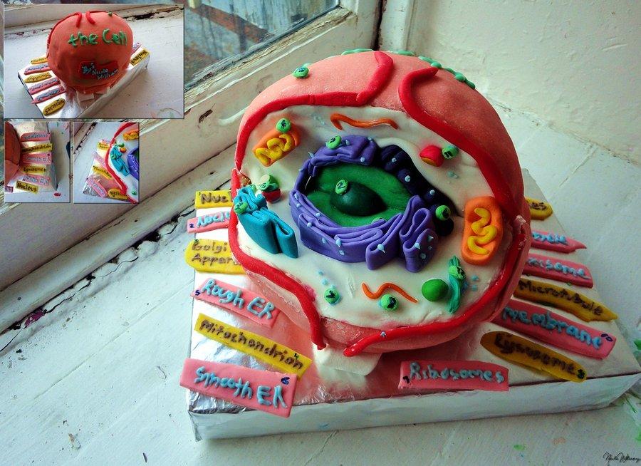 Cakes Preston
