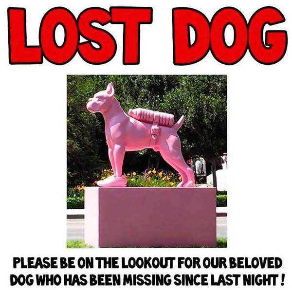 la-la-me-lost-dog-jpg-20130611