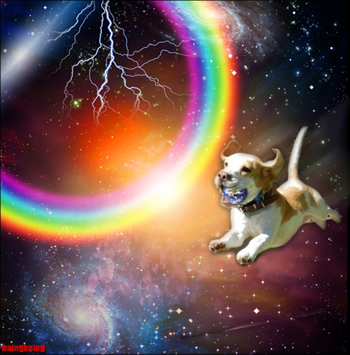 doggiespace680