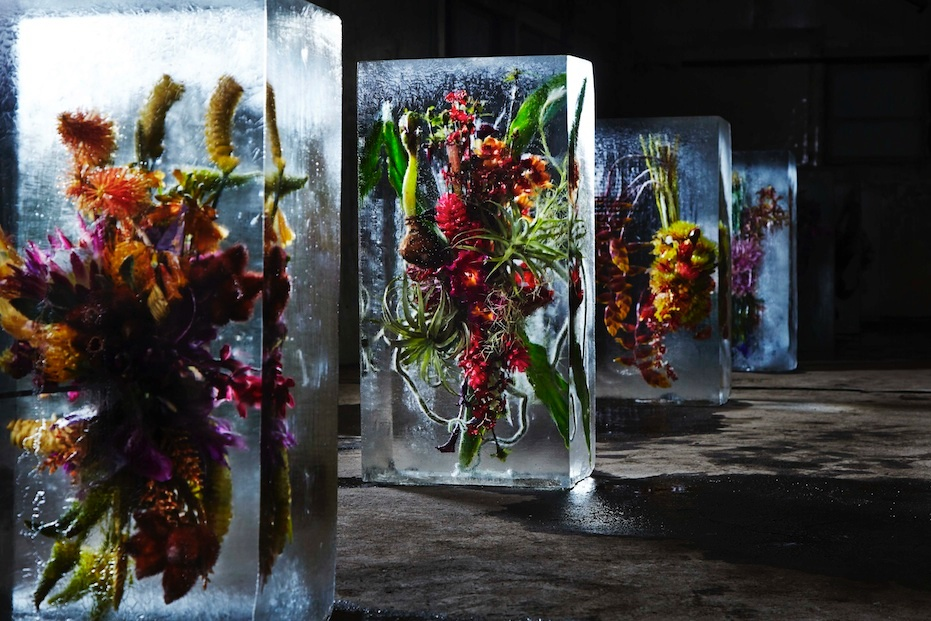 ICED-FLOWERS-3